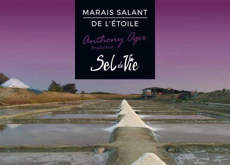 MARAIS SALANT DE L'ÉTOILE – SEL DE VIE