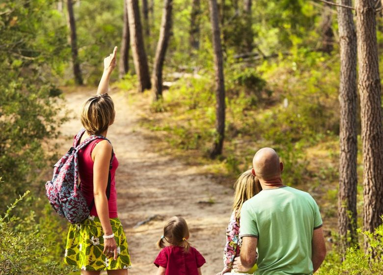 VISITE GUIDÉE BALADE FAMILIALE ENTRE NATURE ET FORÊT